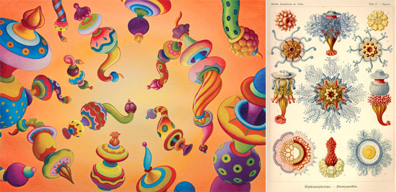 jim woodring ernst haeckel